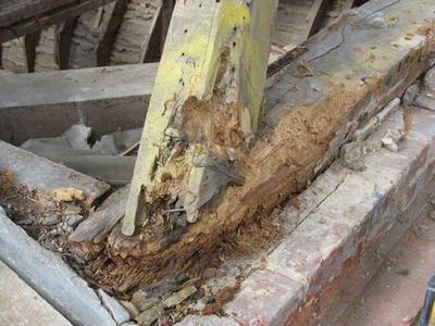 Защита деревянных конструкций и поверхностей: чем обработать дерево от гниения и влаги