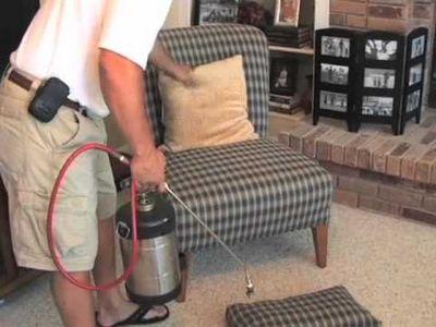 Уничтожаем мелких паразитов в доме: как избавиться от мошек в квартире с помощью ловушек и доступных средств