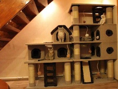 Многоэтажный дом для котов