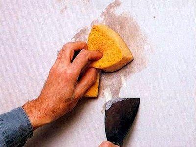Борьба с грибком в домашних условиях: как убрать плесень со стены в квартире простыми и дешевыми средствами